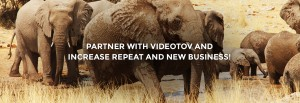 Video Editing Company Partner